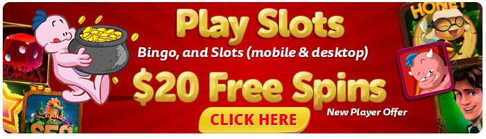 Bingo Slots - Play Slots on Mobile